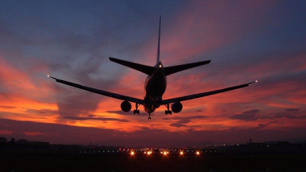 夕焼けに染まる翼
