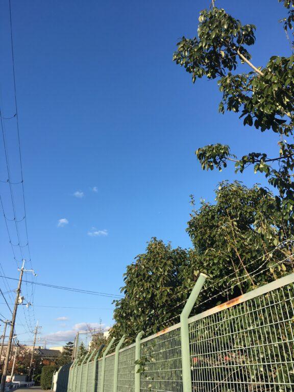通学路と青空